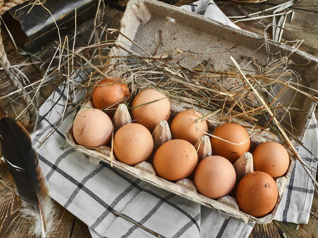 Плюсы покупки яиц у фермеров