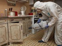 Где заказать дезинфекцию квартиры от тараканов?