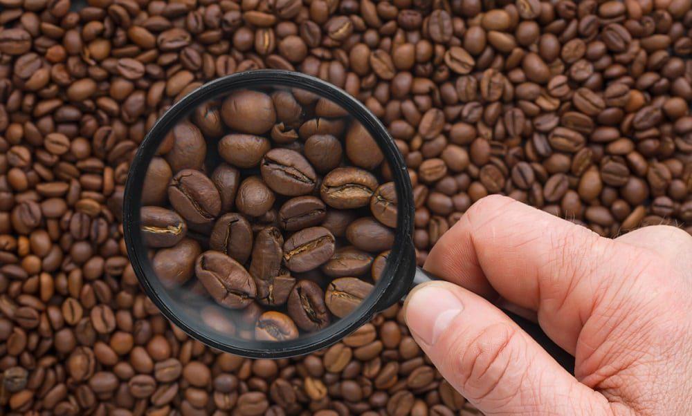 Как правильно выбрать кофе в зёрнах?